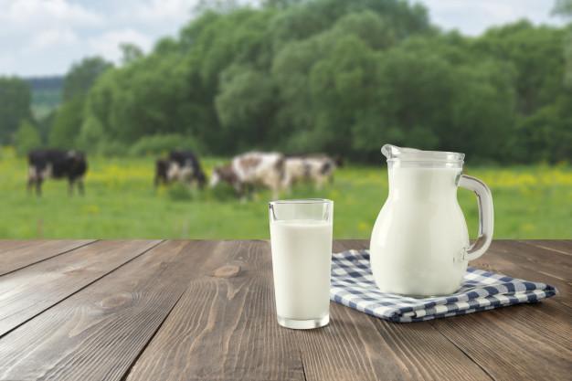 healthy benefits of milk