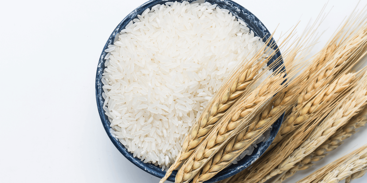 Discover Different Varieties of Rice That Helps in Preventing Obesity